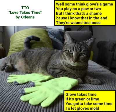 Another funny cat meme of a cat picture with gloves and it is captioned of a song with glove instead of love.