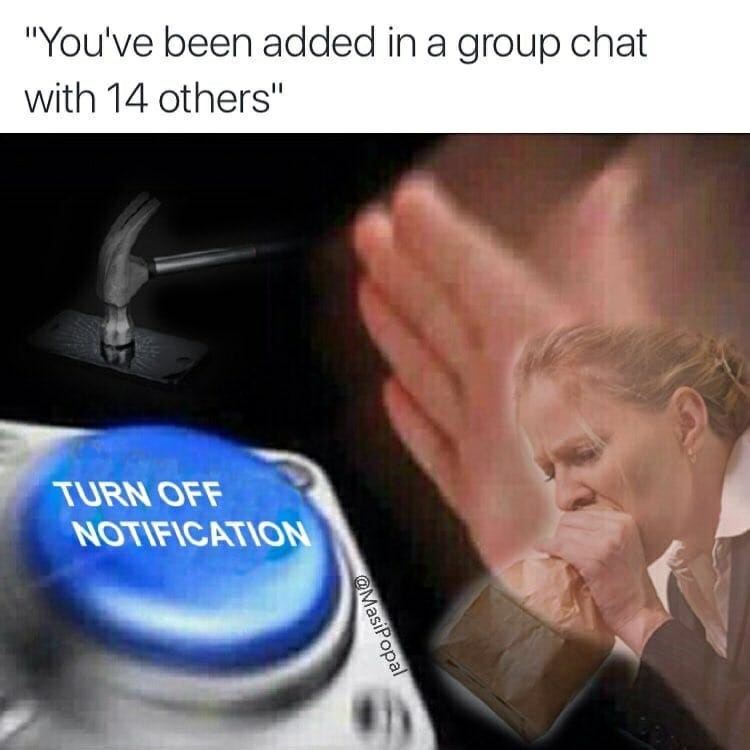 Funny meme about when someone invites you to a group text and you havae to turn the notifications off.