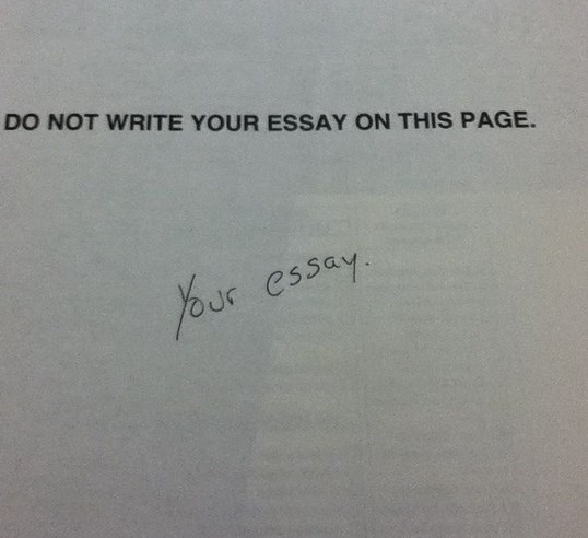 Text - DO NOT WRITE YOUR ESSAY ON THIS PAGE. our essay