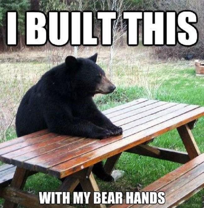 Tuesday pun meme of a bear at a picnic table