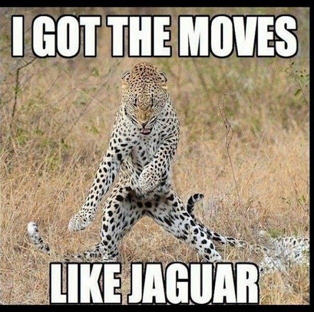 Jaguar dancing pun meme.