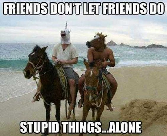meme about friendship with pic of two guys wearing horse masks while riding horses