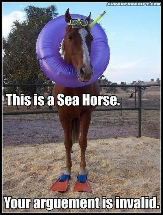 "pun about a horse wearing swimming gear being a ""sea horse"""