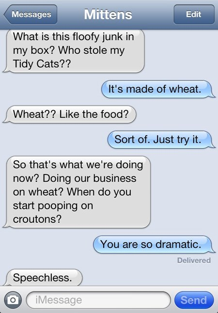 Text - Mittens Messages Edit What is this floofy junk in my box? Who stole my Tidy Cats?? It's made of wheat. Wheat?? Like the food? Sort of. Just try it. So that's what we're doing now? Doing our business on wheat? When do you start pooping on croutons? You are so dramatic. Delivered Speechless. Send iMessage O