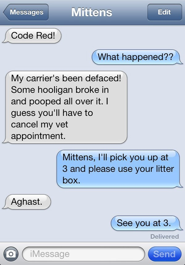 Text - Mittens Messages Edit Code Red! What happened?? My carrier's been defaced! Some hooligan broke in and pooped all over it. I guess you'll have to cancel my vet appointment. Mittens, I'll pick you up at 3 and please use your litter box. Aghast. See you at 3. Delivered iMessage Send