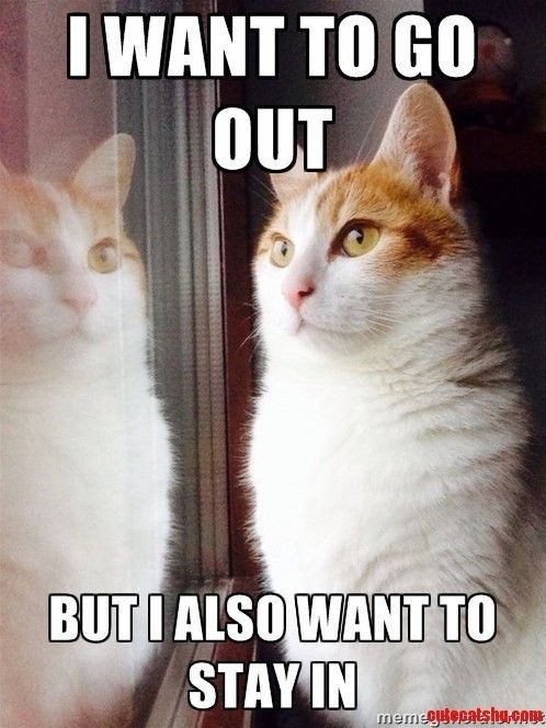 Meme about how cats want to both go out and stay in at the same time.