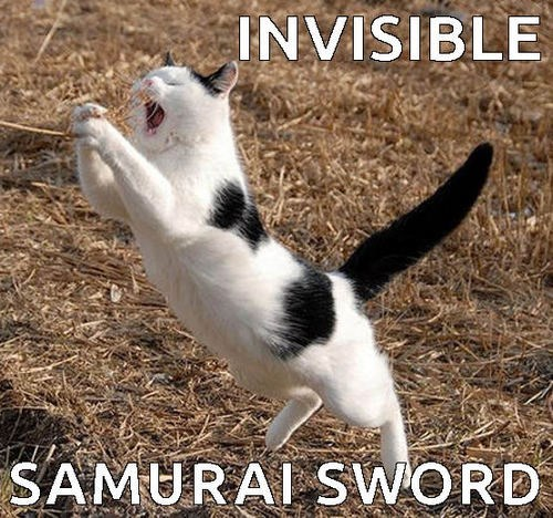 Funny invisible cat meme of samurai sword you just can't see.