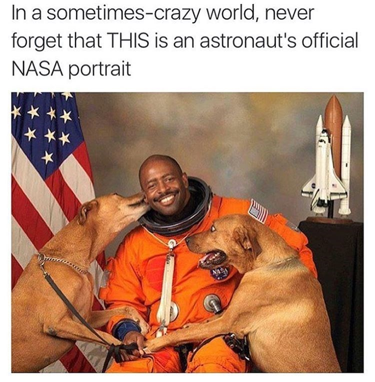 Heartwarming meme reminding us of an astronaut's portrait with two dogs, he is smiling.