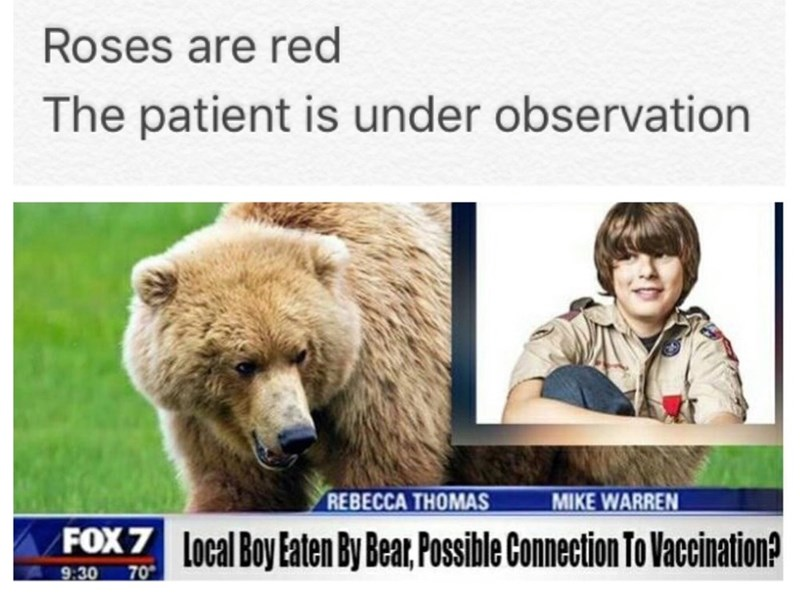 Funny meme: headline poetry about a boy being eaten by a bear and wondering if it was connected to his vaccination.