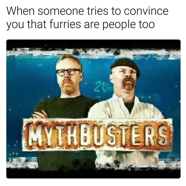 Funny meme featuring the Mythbusters cast and a joke about whether or not Furries are people.