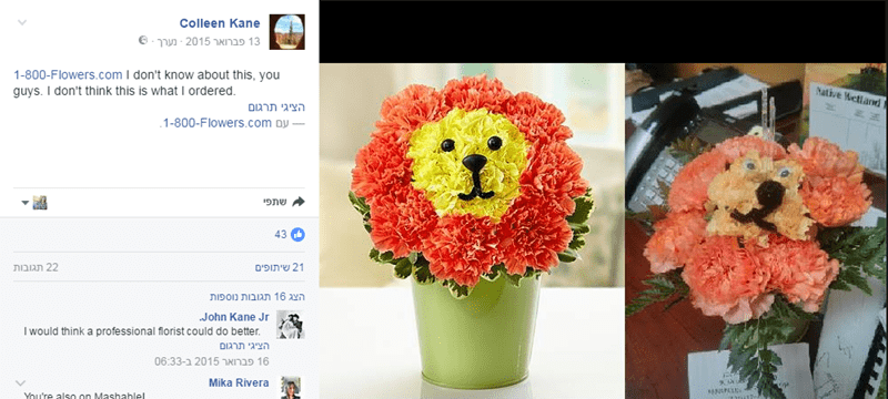Flower - Colleen Kane 13 ברואר @-ערך2015 1-800-Flowers.com don't know about th is, you guys. I don't think this is what I ordered. Mative Hetland F גי תרגןם 1-800-Flowers.com Dy י שתפי 43 א תופים 22 תגובות ם ג ת וספות John Kane Jr I would think a professional florist could do better. ג תרגןם 1 06:33םיברואר 5 Mika Rivera You're also on Mashahlel
