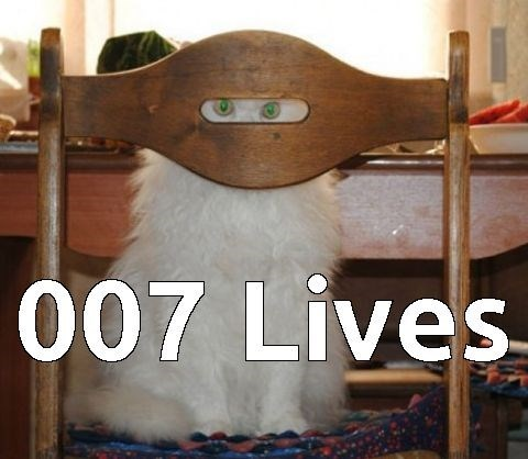 Cat peering through a slit in the chair and dubbed 007 Lives (instead of 9 lives)