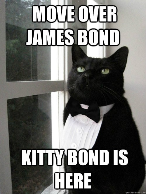 funny cat meme of a kitty dressed in a tux and telling James Bond 007 to move over.