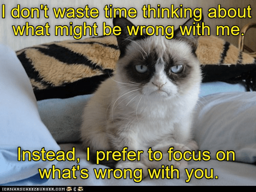Grumpy cat meme about what is wrong with you...