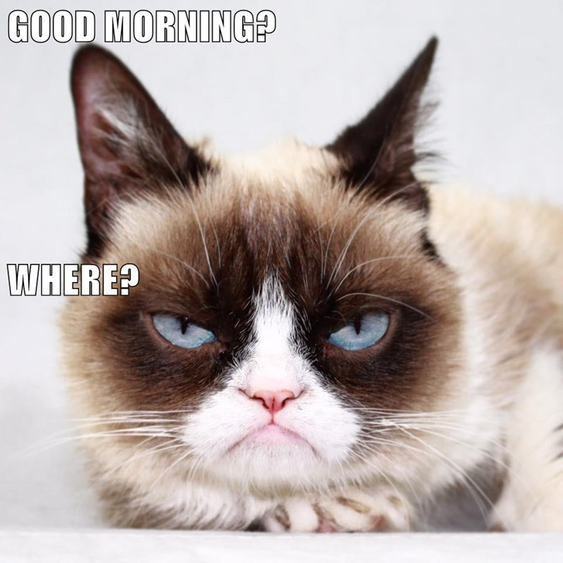 Grumpy cat meme of not enjoying a morning at all.
