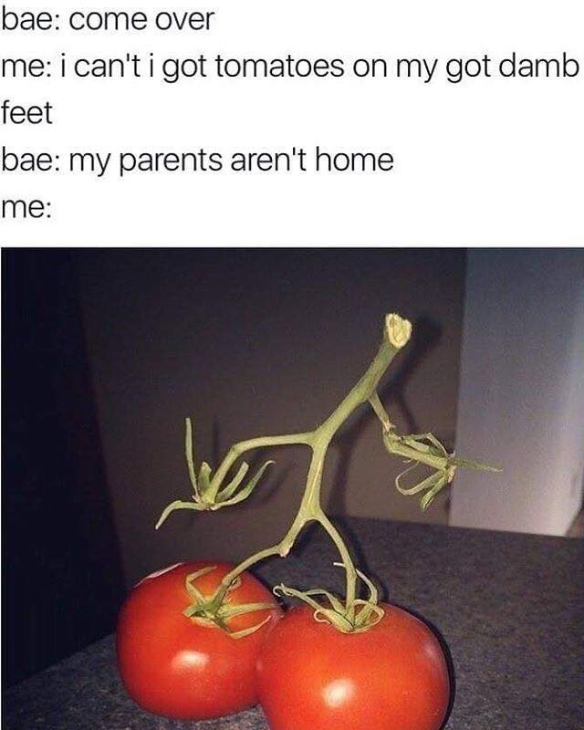 Funny meme in the style of bae come over, but it's a vine tomato that looks like it is a running man