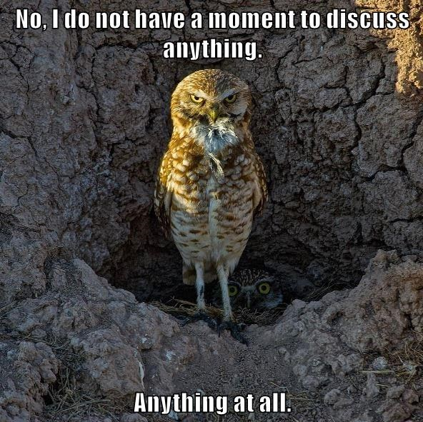 No, I do not have a moment to discuss anything. Anything at all.