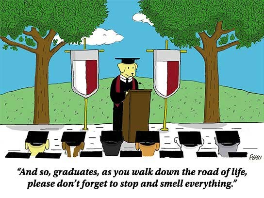 "Cartoon - FERRY ""And so, graduates, as you walk down the road of life, please don't forget to stop and smell everything."""