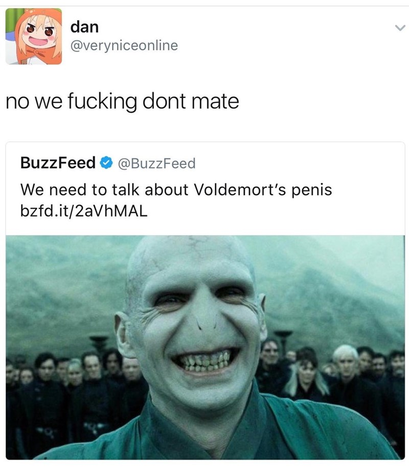 "Funny meme dealing with a Buzzfeed tweet saying ""we need to talk about voldemort's penis"" - the response is that no we don't. Making fun of ridiculous Buzzfeed headlines."