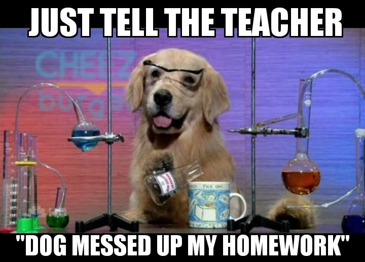 Meme of a chemistry dog in the lab, telling you to just tell teacher that dog messed up the homework assignment.
