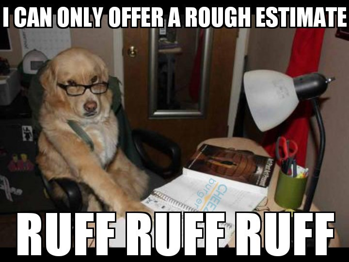 Meme of financial advice dog that is only able to provide a rough (ruff) estimate.