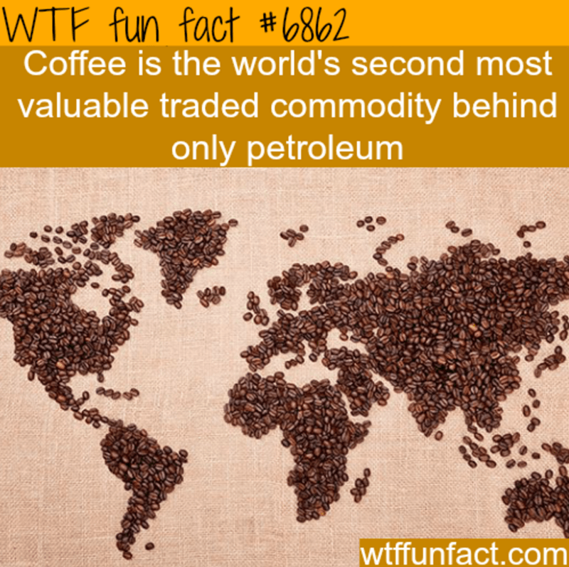 Text - WTF fun fact #6862 Coffee is the world's second most valuable traded commodity behind only petroleum wtffunfact.com