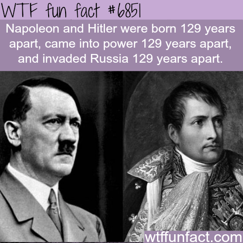 Text - WTF fun fact #6851 Napoleon and Hitler were born 129 years apart, came into power 129 years apart, and invaded Russia 129 years apart. wtffunfact.com