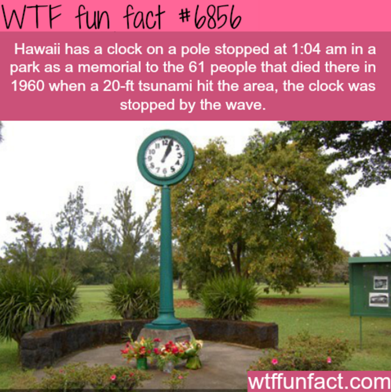Yard - WTF fun fact #6856 Hawaii has a clock on a pole stopped at 1:04 am in a park as a memorial to the 61 people that died there in 1960 when a 20-ft tsunami hit the area, the clock was stopped by the wave. wtffunfact.com