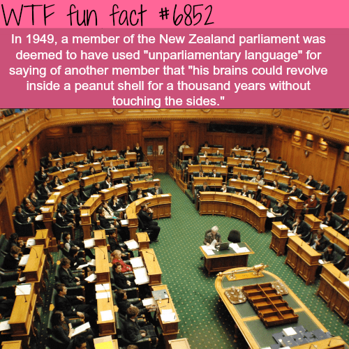 "Government - WTF fun fact #6852 In 1949, a member of the New Zealand parliament was deemed to have used ""unparliamentary language"" for saying of another member that ""his brains could revolve inside a peanut shell for a thousand years without touching the sides."""