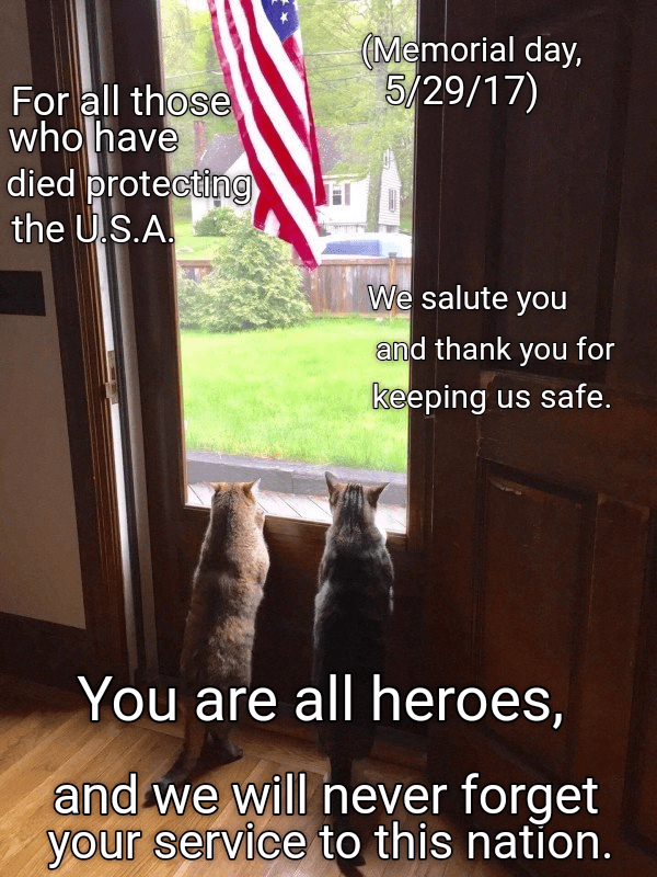 Memorial Day meme for 2017