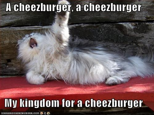 Cheezburger Image 903821568