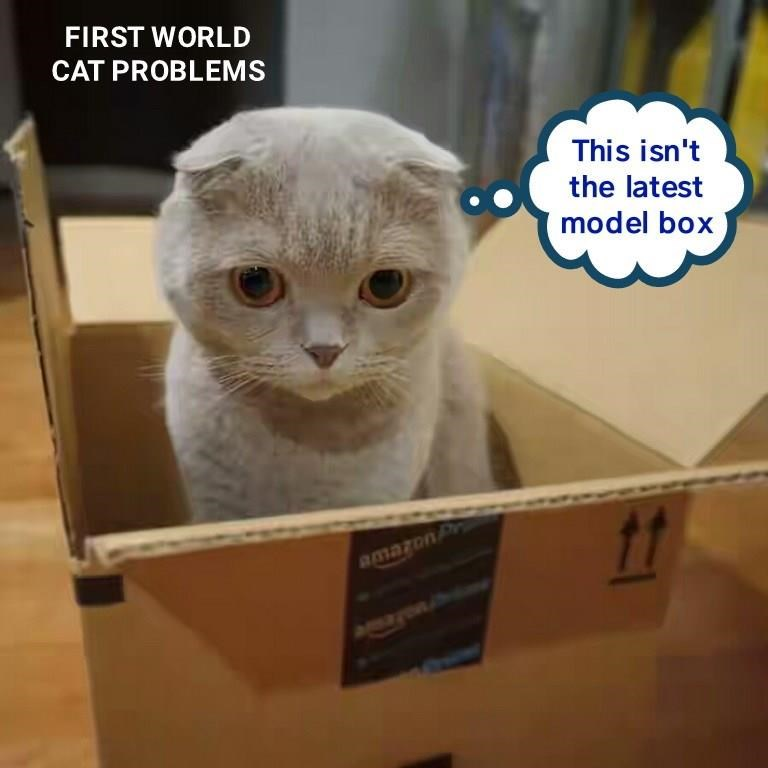 First world cat problems of a box not being the latest model that everyone else has.