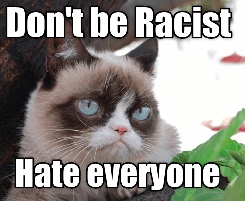 Grumpy cat advice for stamping out racism, hate everyone equally.
