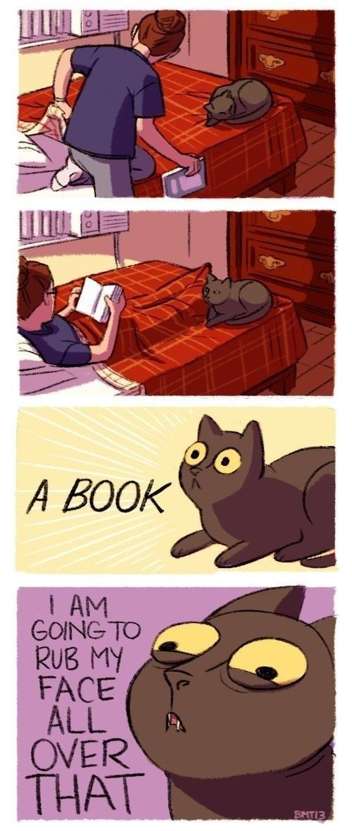 Cartoon - A BOOK 1 AM GOING TO RUB MY FACE ALL OVER THAT BNT 3