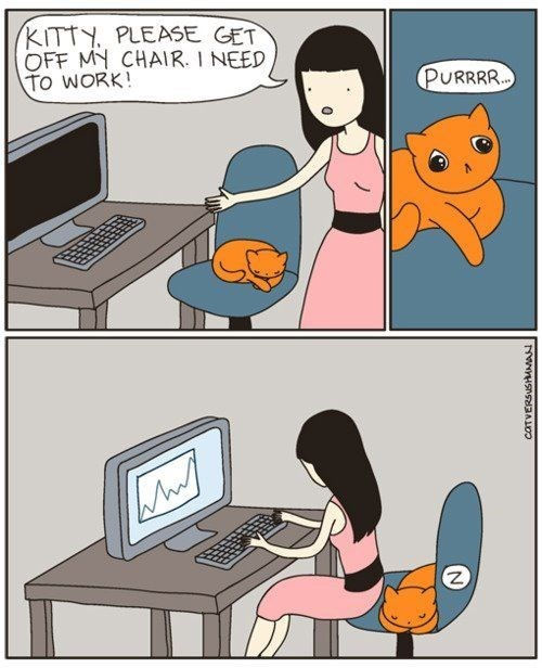 Cartoon - KITTY PLEASE GET OFF MY CHAIR. I NEED TO WORK! PURRRR. COTVERSUSHAMA