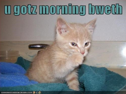 Polite kitten letting you know you have morning breath.