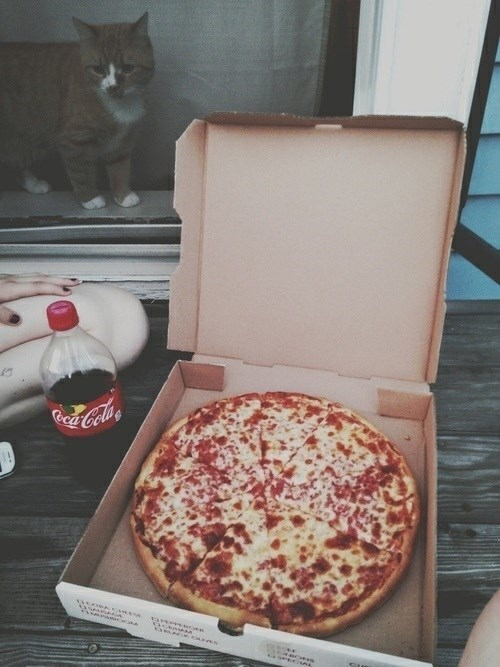 Fresh pizza pie and bottle of coke on the kitchen counter and a cat in the window outside, looking at that pizza.