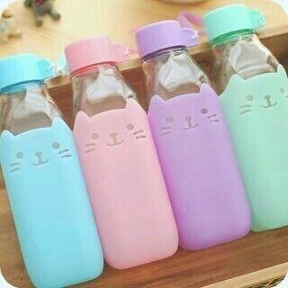 cat bottles