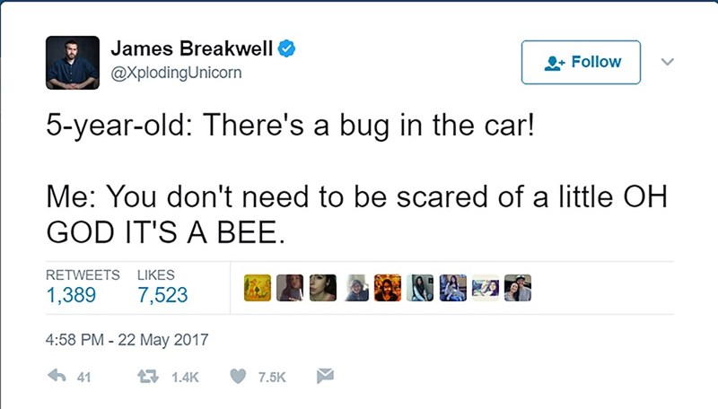 Text - James Breakwell + Follow @XplodingUnicorn 5-year-old: There's a bug in the car! Me: You don't need to be scared of a little OH GOD IT'S A BEE RETWEETS LIKES 7,523 1,389 4:58 PM -22 May 2017 41 1.4K 7.5K