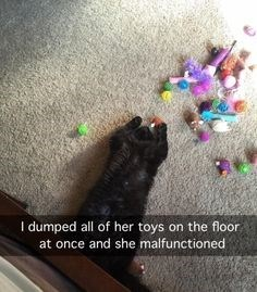 Cat - dumped all of her toys on the floor at once and she malfunctioned