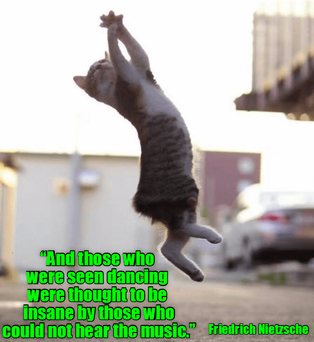 Nietzsche quote about those who could not hear the music thought those dancing were insane - cat jumping meme.