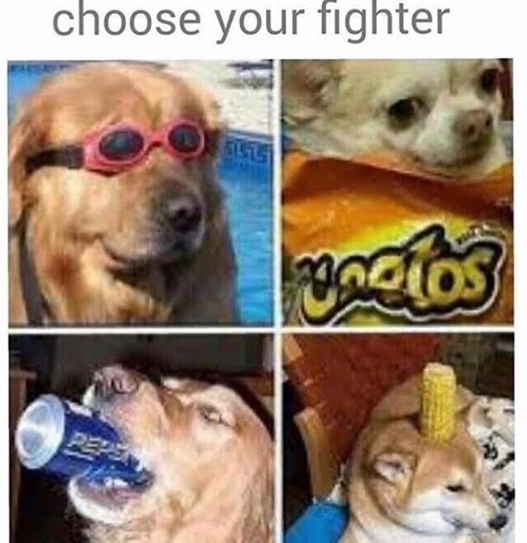 Funny dog meme that invites you to choose your fighter.