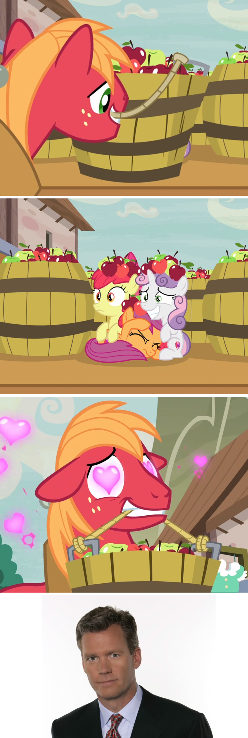 to catch a predator Sweetie Belle apple bloom screencap hard to say anything Big Macintosh comic Chris Hansen Scootaloo