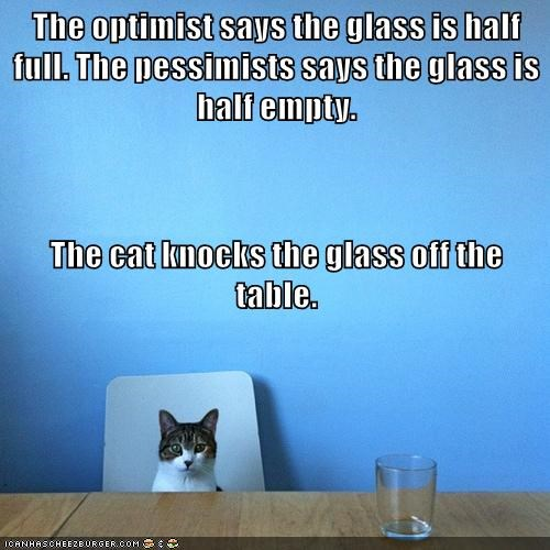 Cat knocks glass of table for optimist.