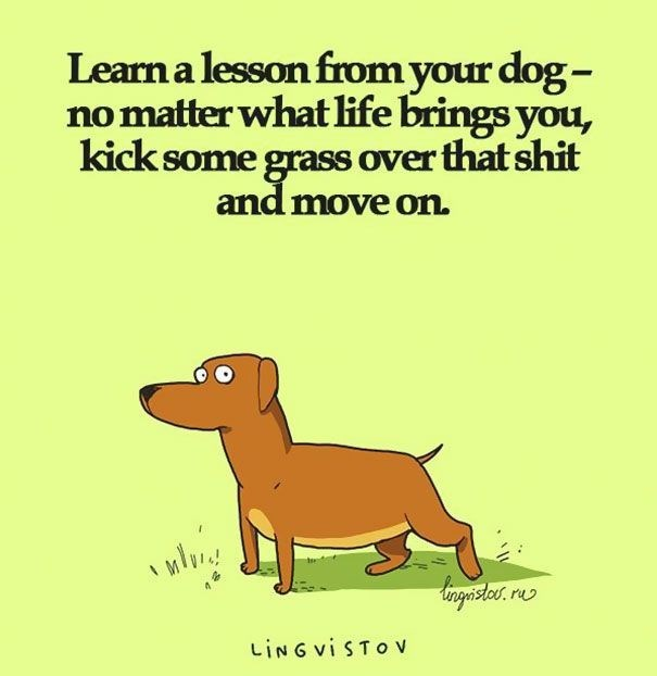 Cartoonish meme about how to be more like a dog by kicking some grass over whatever life dishes you.