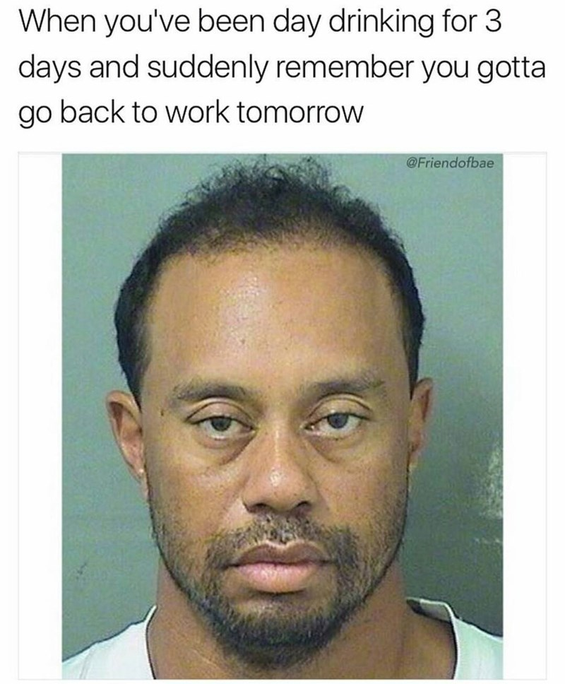 Funny meme using Tiger Woods' mug shot to describe how it feels when you've been day drinking all weekend and you need to go back to work.