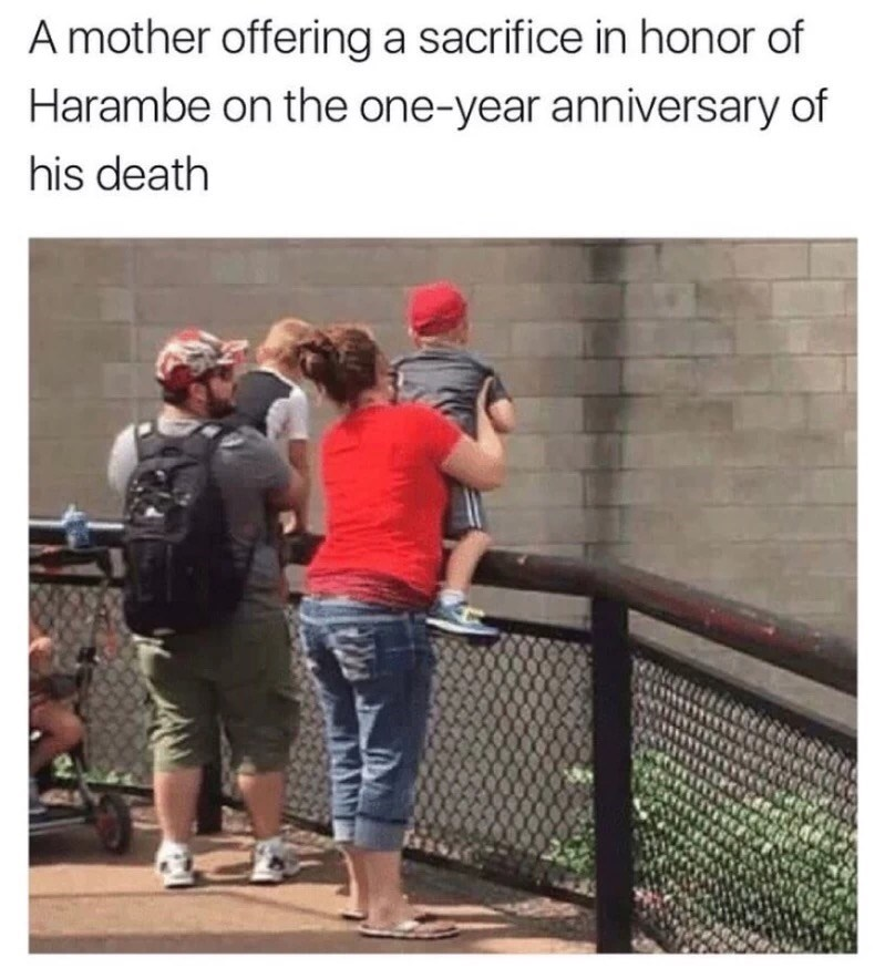 Harambe Tuesday meme of woman offering her kid as a sacrifice on the 1 year anniversary of Harambe's death