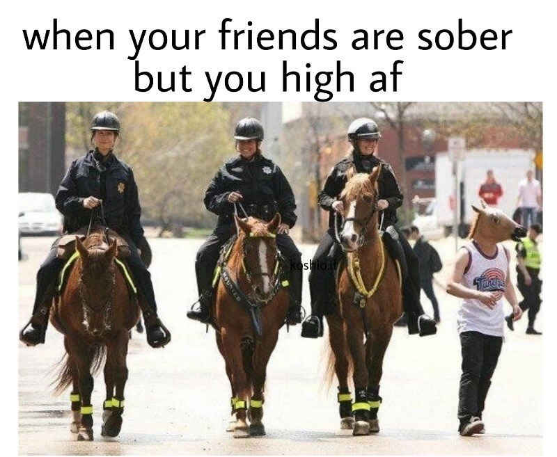horse mask Tuesday meme of when your friends are sober but you are high af and police on horses and man wearing horse mask