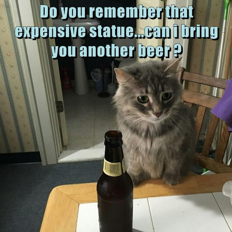 Cat bringing you beers and asking if you really cared at all about that expensive statue.
