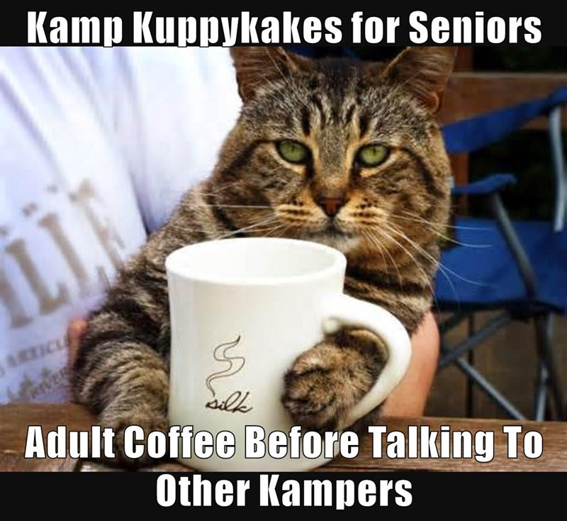 Kamp kuppykakes meme for seniors and a cup of a coffee